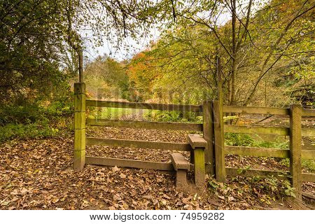 Stile In Plessey Woods