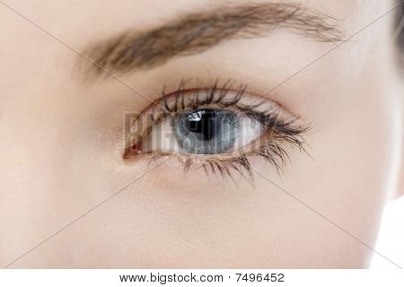 Close Up Of A Womans Eye