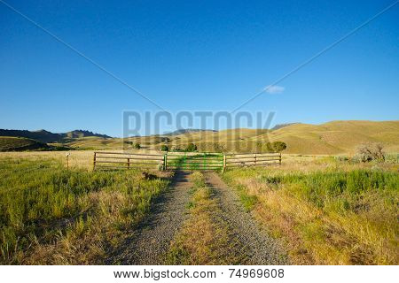 Gravel Road In Ranch Land