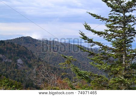 Appalachian Mountain Scene-02