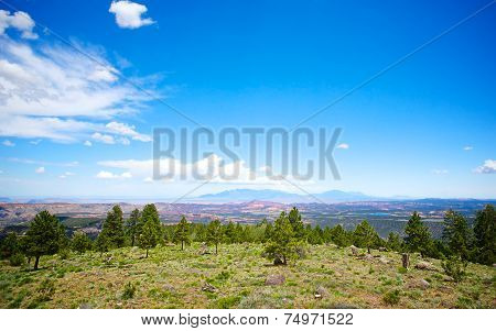 Hillside Overlooking Vast Country