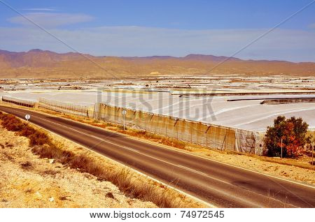 view of a landscape with intensive farming in Almeria, Spain