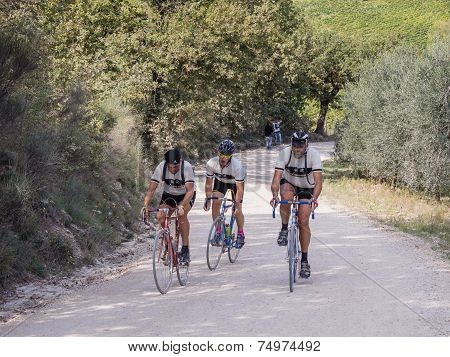 Unidentified Partipants Of L'eroica, Italy