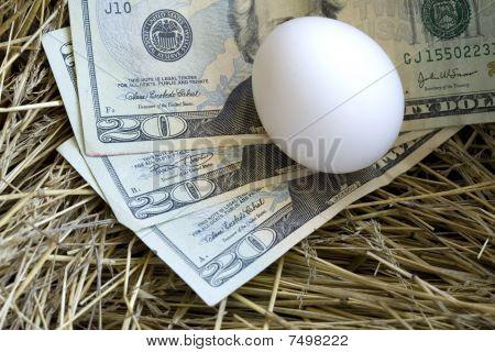 Conceptual nest egg.