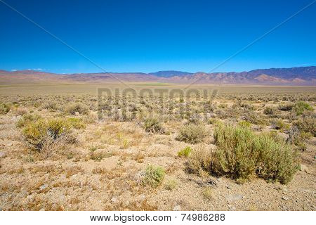 Nevada Wilderness
