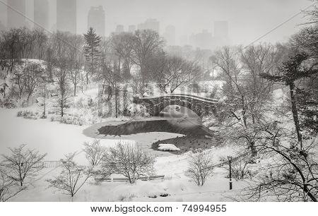 Winter Scene In New York City: Snowstorm In Central Park