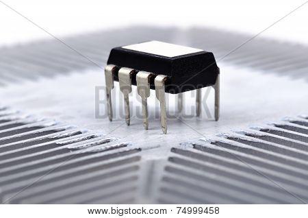 Black Microchip