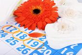 picture of menses  - Sanitary pads and orange Gerber on blue calendar background - JPG