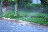 stock photo of fountain grass  - Automatic sprinklers watering grass - JPG