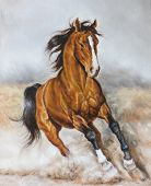 pic of paint horse  - oil painting of a horse on the prairie - JPG