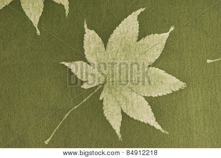 Close-up of a maple leaf on olive drab paper background