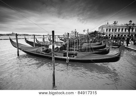 Gondolas In Front Of Riva Degli Schiavoni Bw