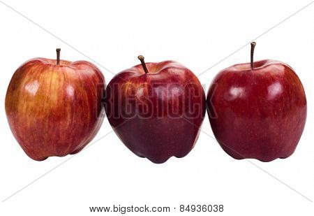 Close-up of apples in a row