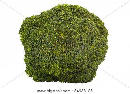 Close-up of a broccoli
