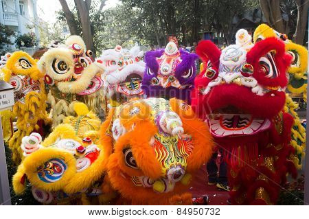 Lion dance in Chinese lunar new year