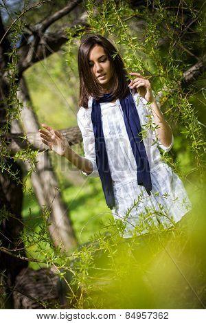 Beautiful Girl In A Flowering Tree