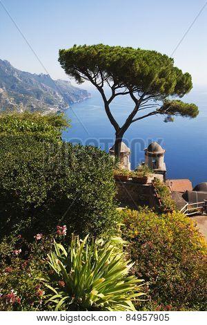 High angle view of a garden, Amalfi, Province Of Salerno, Gulf Of Salerno,Tyrrhenian Sea, Campania, Italy