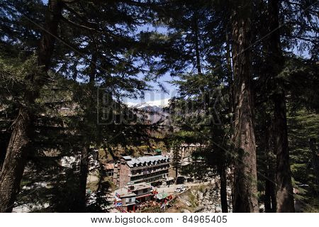 High angle view of a town, Manali, Himachal Pradesh, India