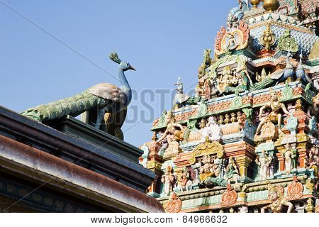 Architectural detail of Kapaleeshwarar Temple, Mylapore, Chennai, Tamil Nadu, India