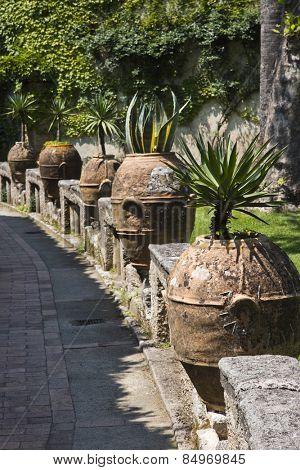 Potted plants in a garden, Ravello, Amalfi Coast, Salerno, Campania, Italy