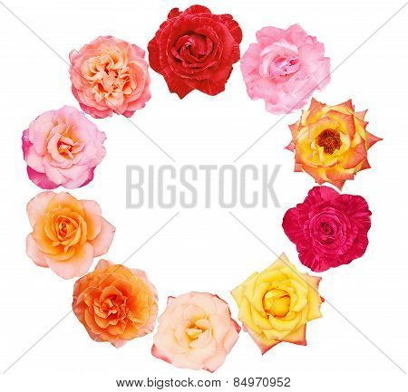 Collection Of Beautiful Roses