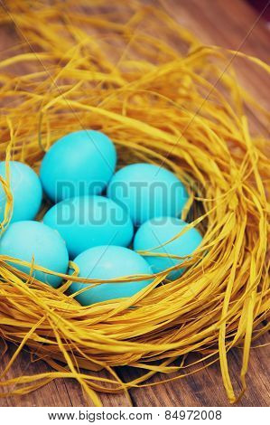 Many Eggs In The Nest