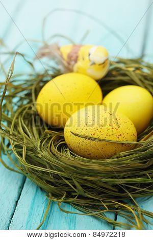 Eggs With A Bird