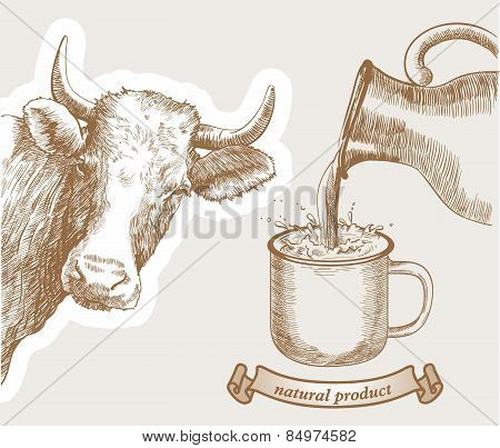 cow and natural milk
