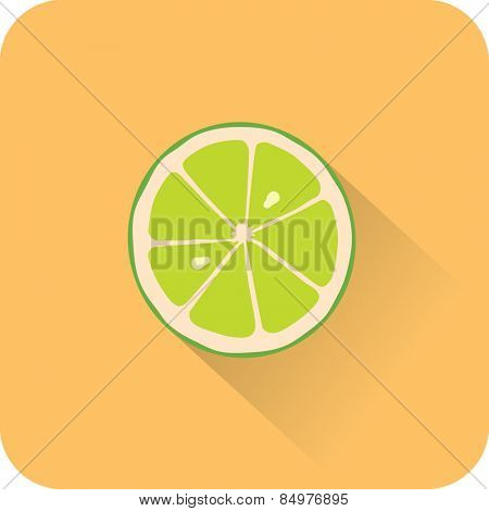 Lime icon. Flat design style modern vector illustration
