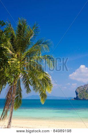 Green Getaway Exotic Paradise