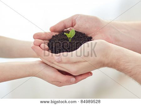 people, charity, family and care concept - close up of father and girl holding soil with green sprout in cupped hands at home
