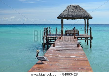 A Pelican Sitting On A Pier By The Sea
