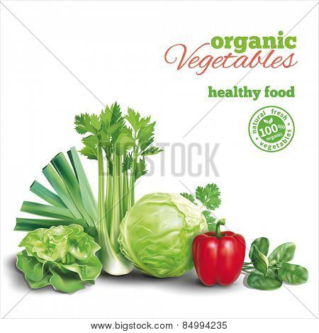 Vegetables composition on white. Vector eps 10.