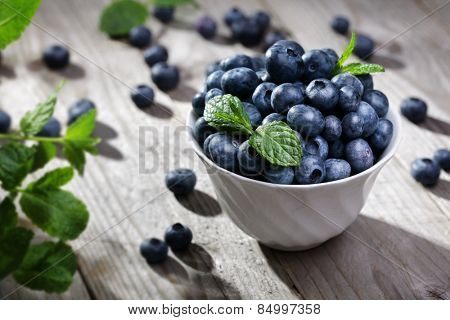 Blueberry antioxidant organic superfood in a bowl concept for healthy eating and nutrition