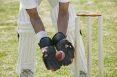 stock photo of cricket ball  - Cricket wicketkeeper catching a ball behind stumps - JPG