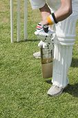 picture of cricket  - Cricket batsman playing a defensive stroke - JPG