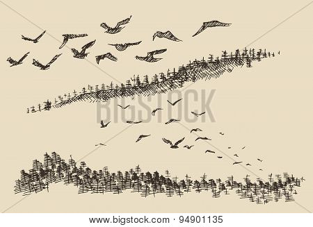 Hand drawn landscape flying birds forest vintage