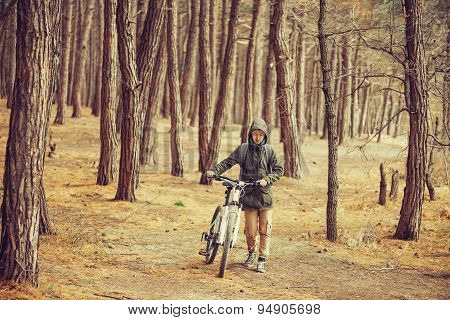 Hiker Walking With A Bicycle In The Forest