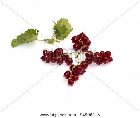 The Red Currant Which Is Laid Out In The Form Of A Figure