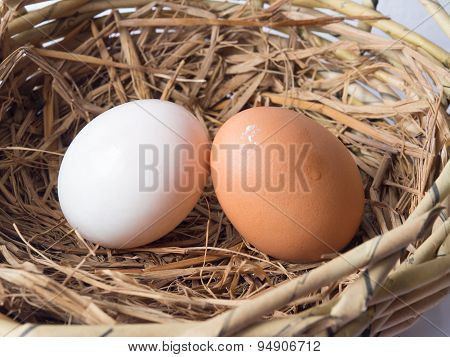 Couple of Chicken eggs and duck eggs.