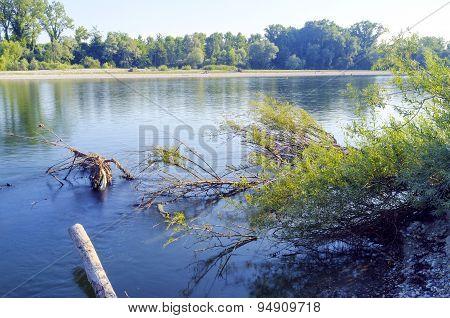 Ticino river banks, springtime. Color image