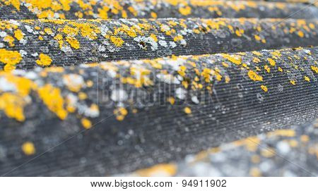 Old Wavy Roofing Slate Covered With Lichen