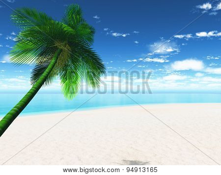 3D render of a palm tree sunny beach landscape