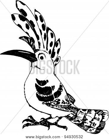 Hoopoe black on white