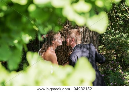 Bride and groom near the tree