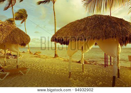 Art Retro  Image Of Tropical Beach