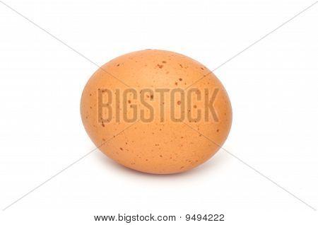 Brown Chicken Egg
