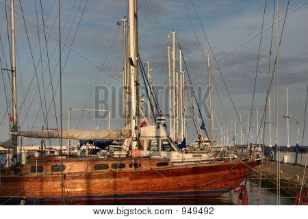 Sailboats In The Marina