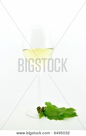 white wine in goblet with vine leaves