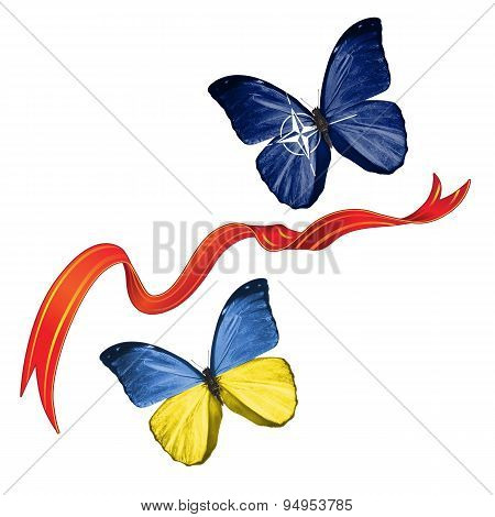 Two butterflies with symbols of Ukraine and NATO